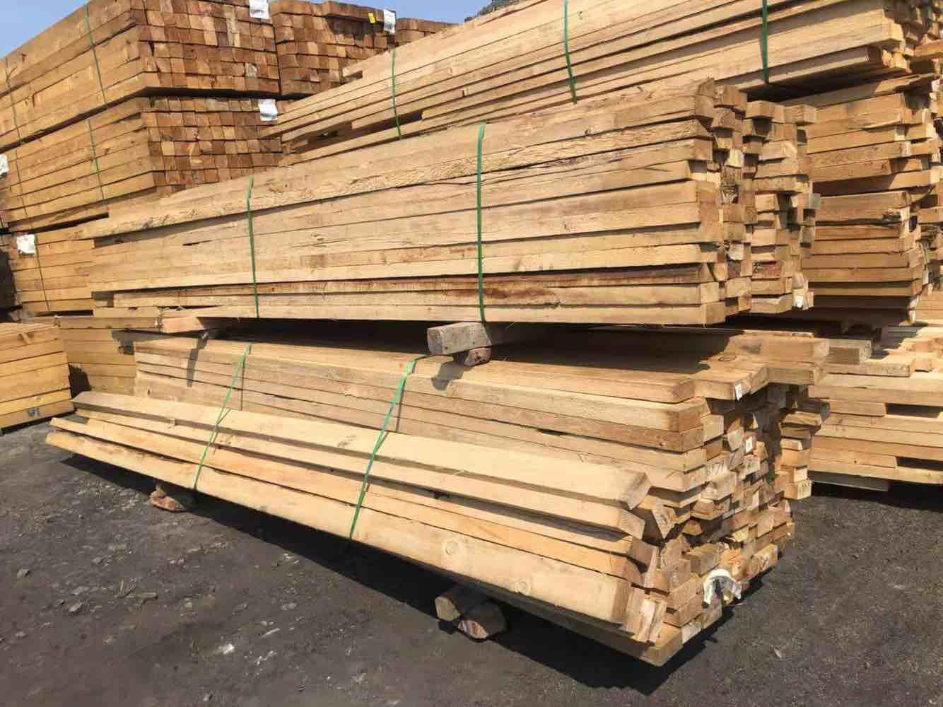 WFP实用级铁杉